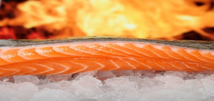 Carnes de peixes
